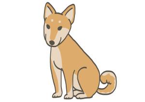 縄文柴犬-