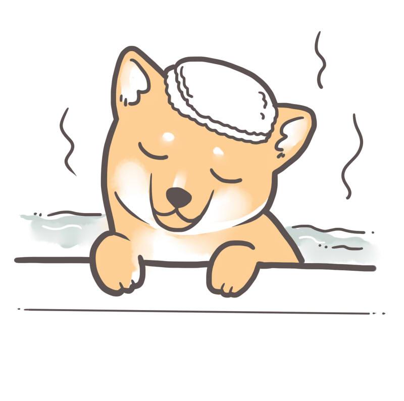 【柴犬に多い皮膚トラブル】かゆみ・アレルギー・皮膚病はどうする?
