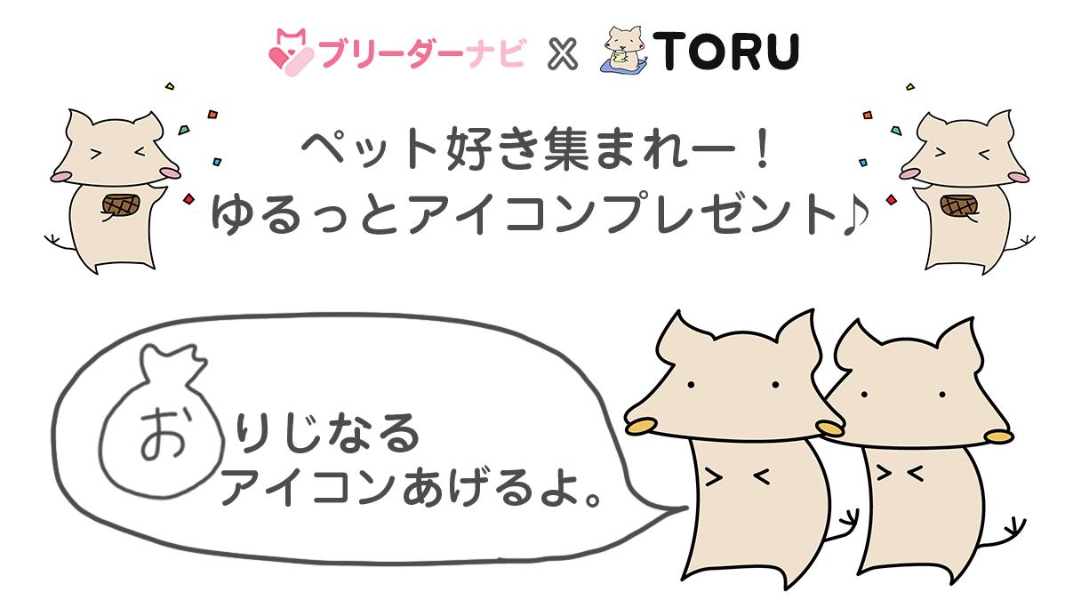 【アイコンプレゼントキャンペーン】動物大好きTORUさんが描くTwitterオリジナルアイコンをプレゼント‼
